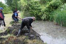 entretien des berges Patrimoine Marais