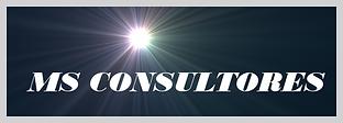consultoria ms consultores