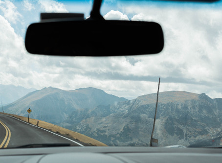 The Nervous System as a Windshield