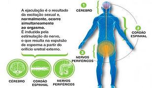ejaculação - Cópia.jpg