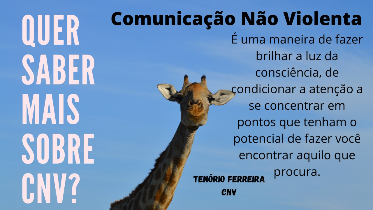 CNV_TEN%C3%83%C2%93RIO_edited