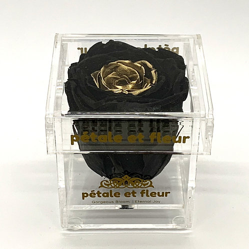 Single black with gold heart color rose in acrylic box