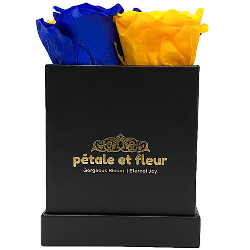 Monet collection black box with  blue and yellow roses