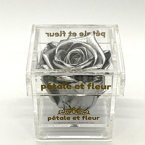 Single silver color rose in acrylic box