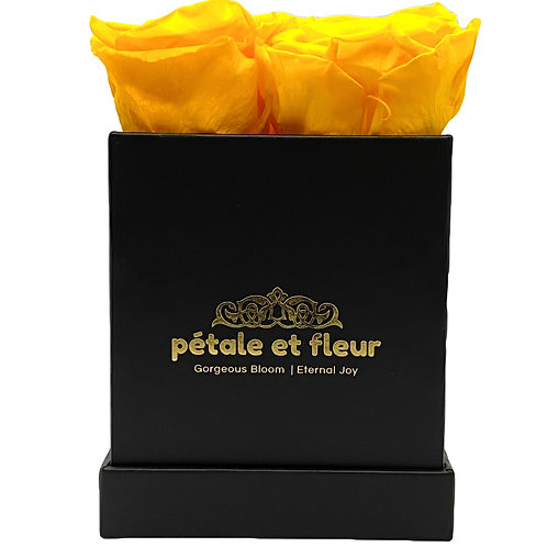 Monet collection black box with  yellow roses