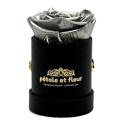 Single silver color rose in black  box