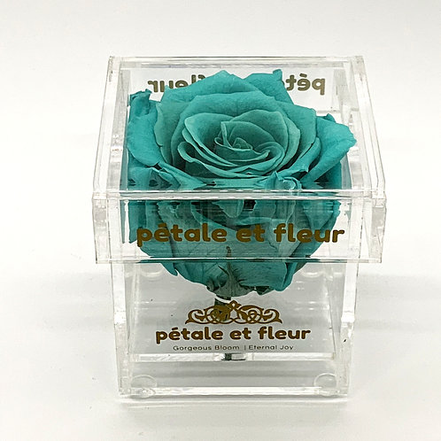 Single mint color rose in acrylic box