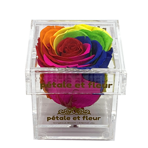 Single rainbow color rose in acrylic box