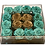Thumbnail: Mint green with gold color roses