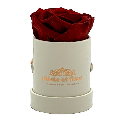 "Single sparkle red color rose in white box (2""x 2""x 2"")"