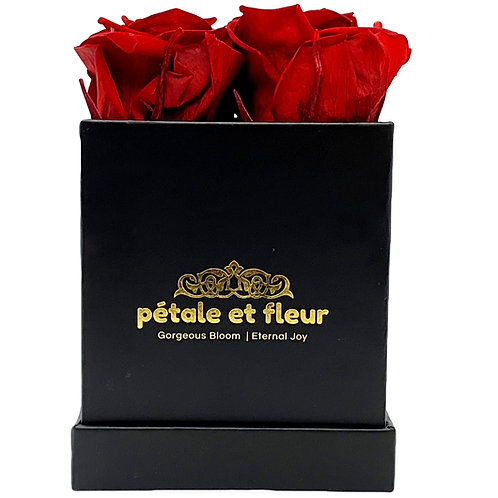 Monet collection black box with four burgundy roses