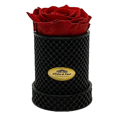 Single burgundy rose in a 3-D printed box