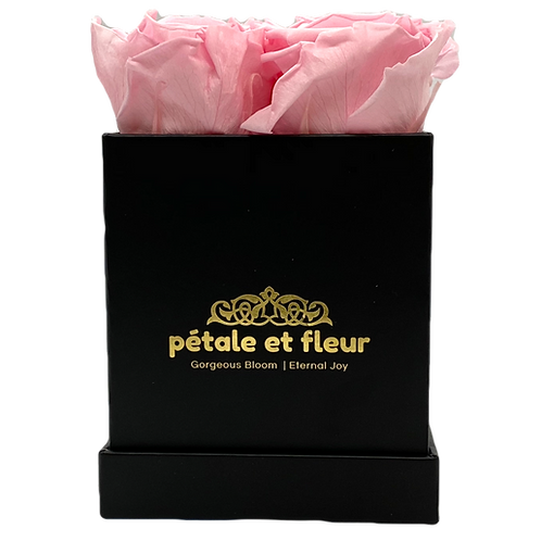Monet collection black box with four pink roses