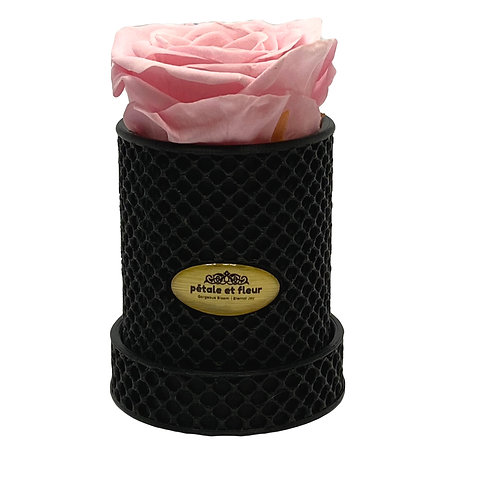 Single pink rose in a 3-D printed box