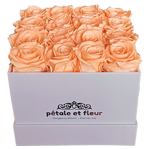 Monet collection white box with sixteen peach roses