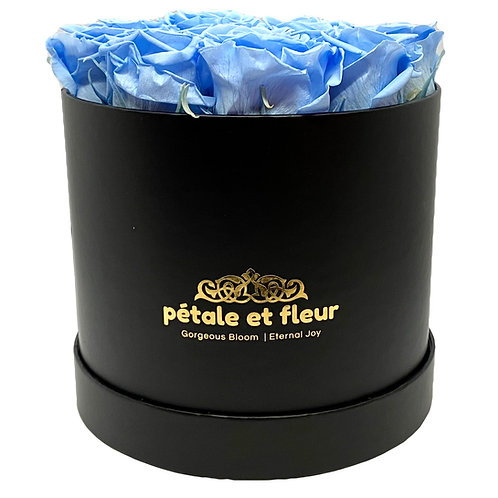 Twelve baby blue roses in a round black box