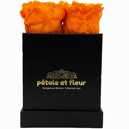 Monet collection black box with orange roses