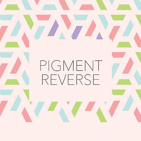 Pigment Reverse Box