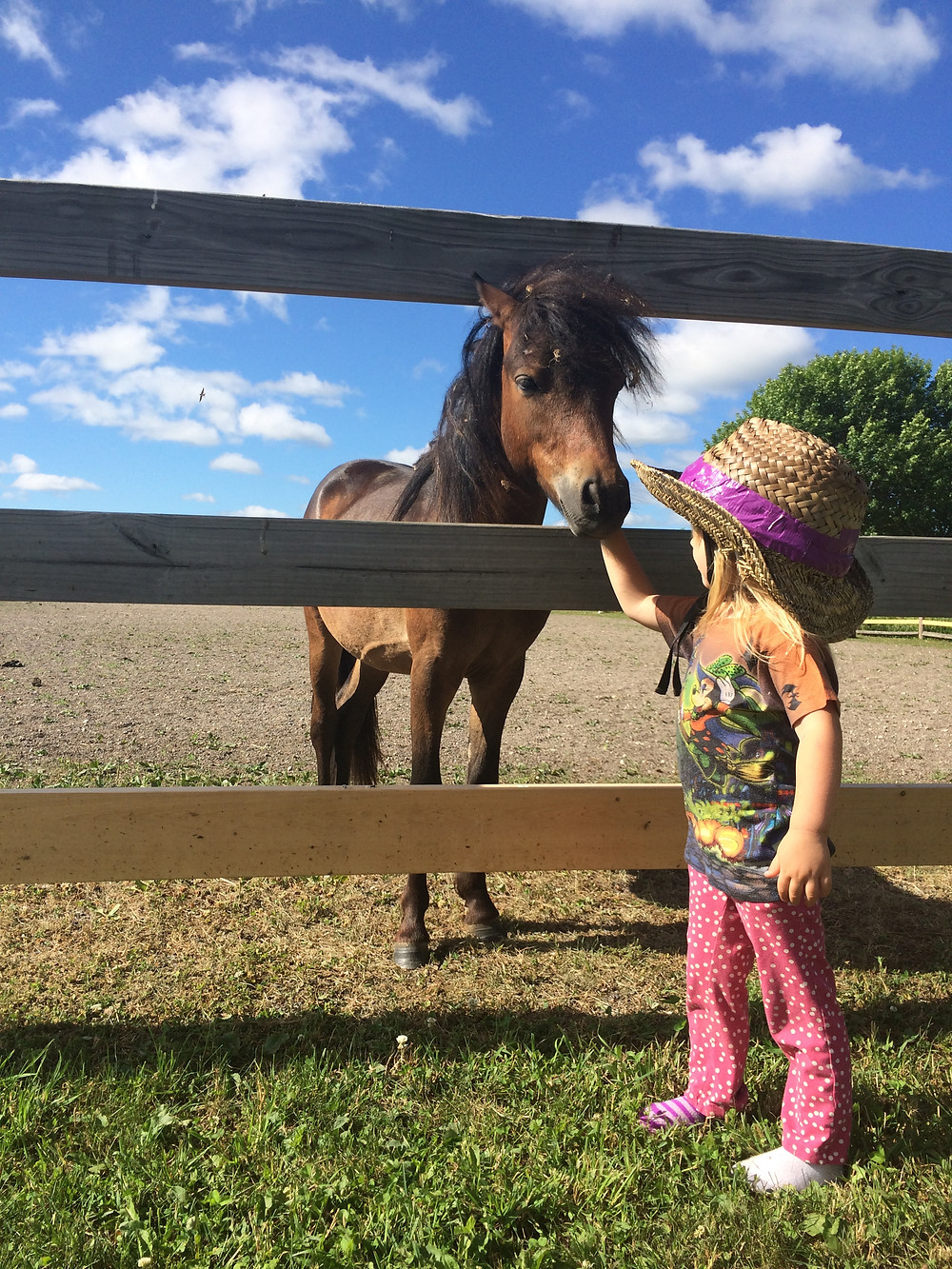 Bandolin & his friend Wilma