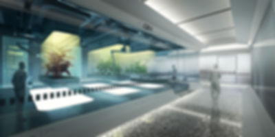 laboratorio2 copy.jpg