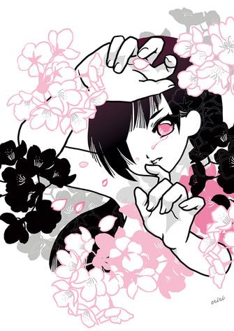 桜の雫 - SAKURA drop - / 2019