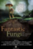 fantastic fungi mountaintop film series