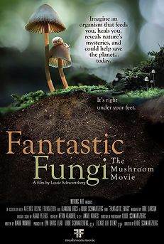fantastic fungi mountaintop film series