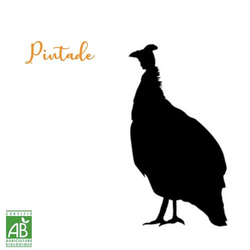 AME01 Pintade +/- 1.4 kg (Prix au kilo)