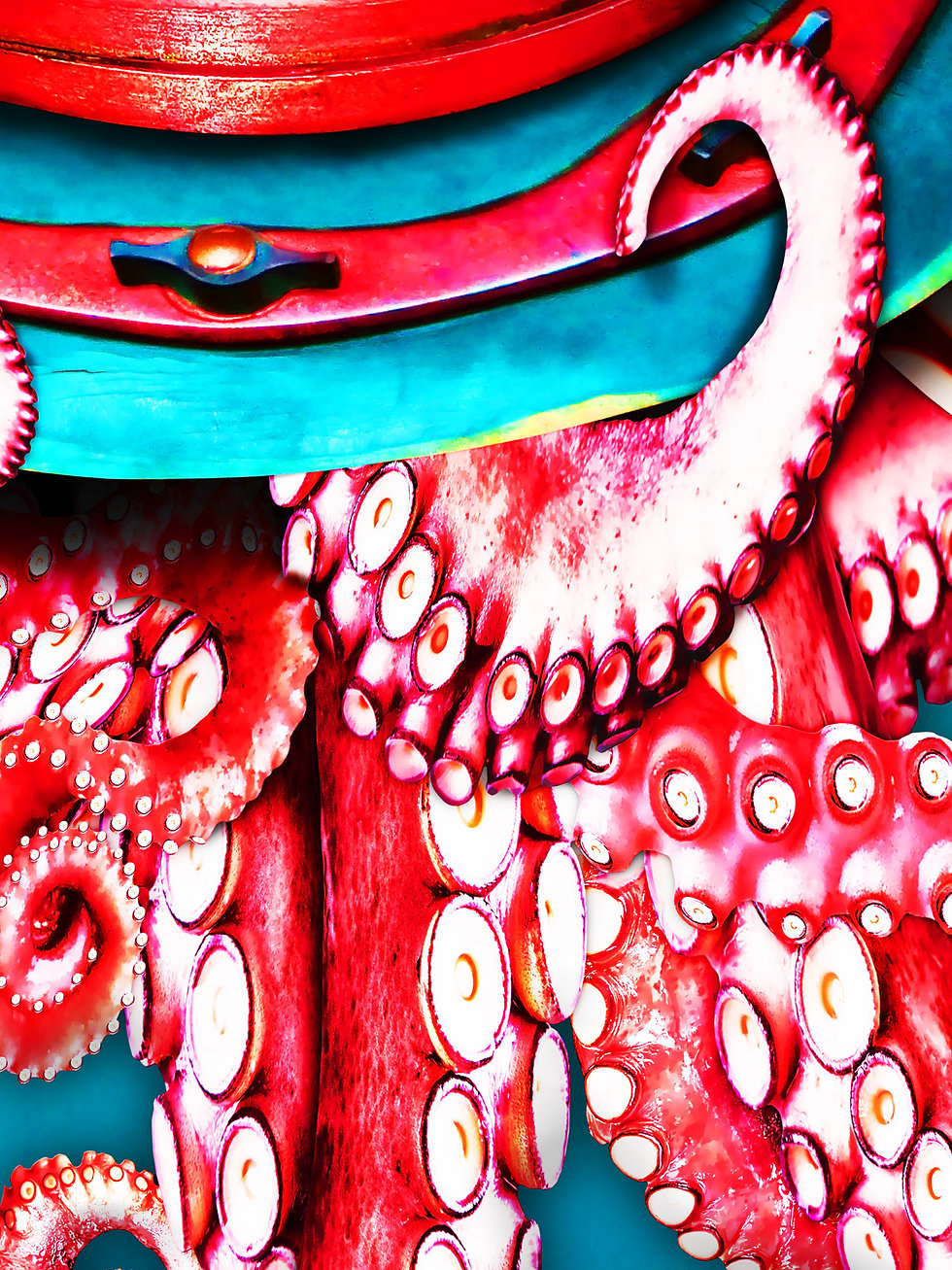Octopus_artwork_4.jpg