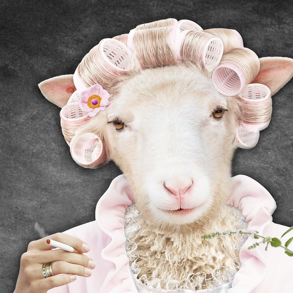 SHEEP_art_Chalet_art_2.jpg
