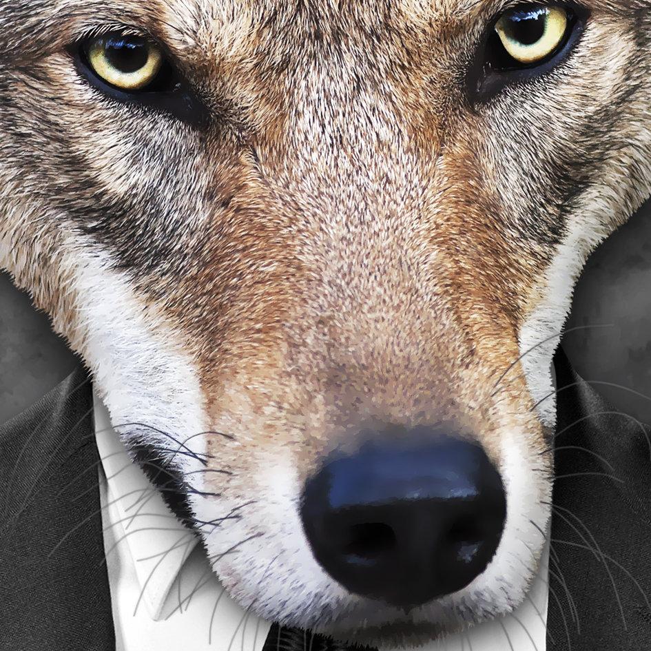 Fox_artwork_Mr_Fox_3.jpg