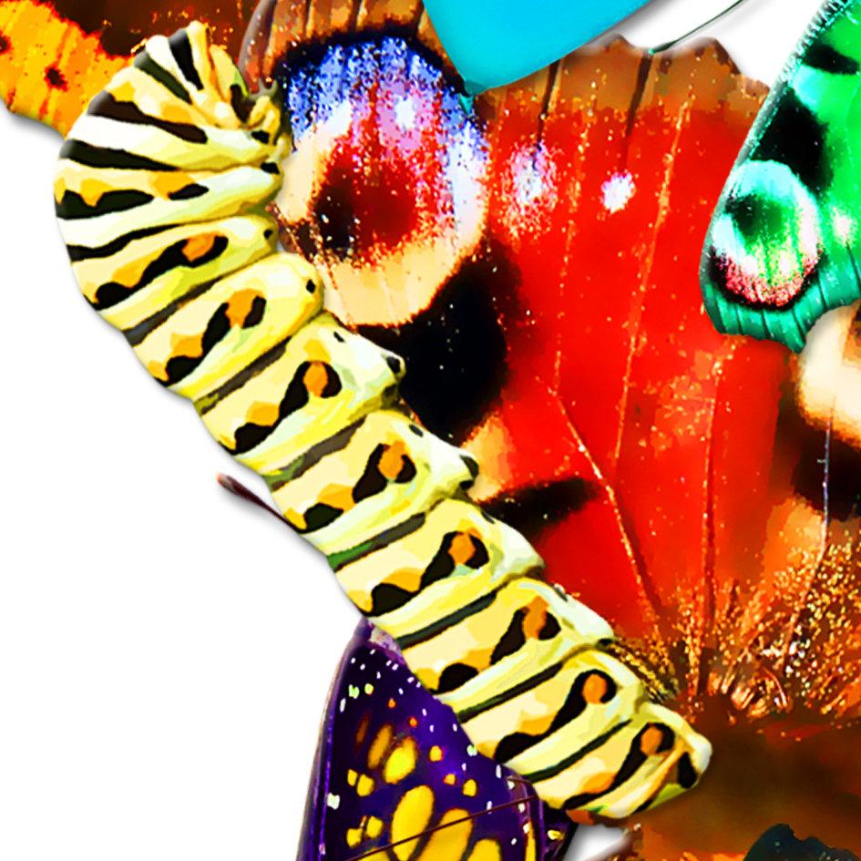 Butterfly_artwork_Peace_art_8.jpg