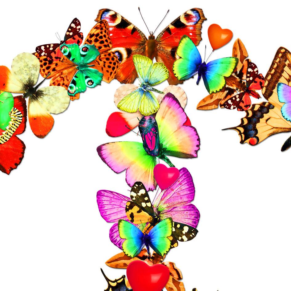 Butterfly_artwork_Peace_art_2.jpg
