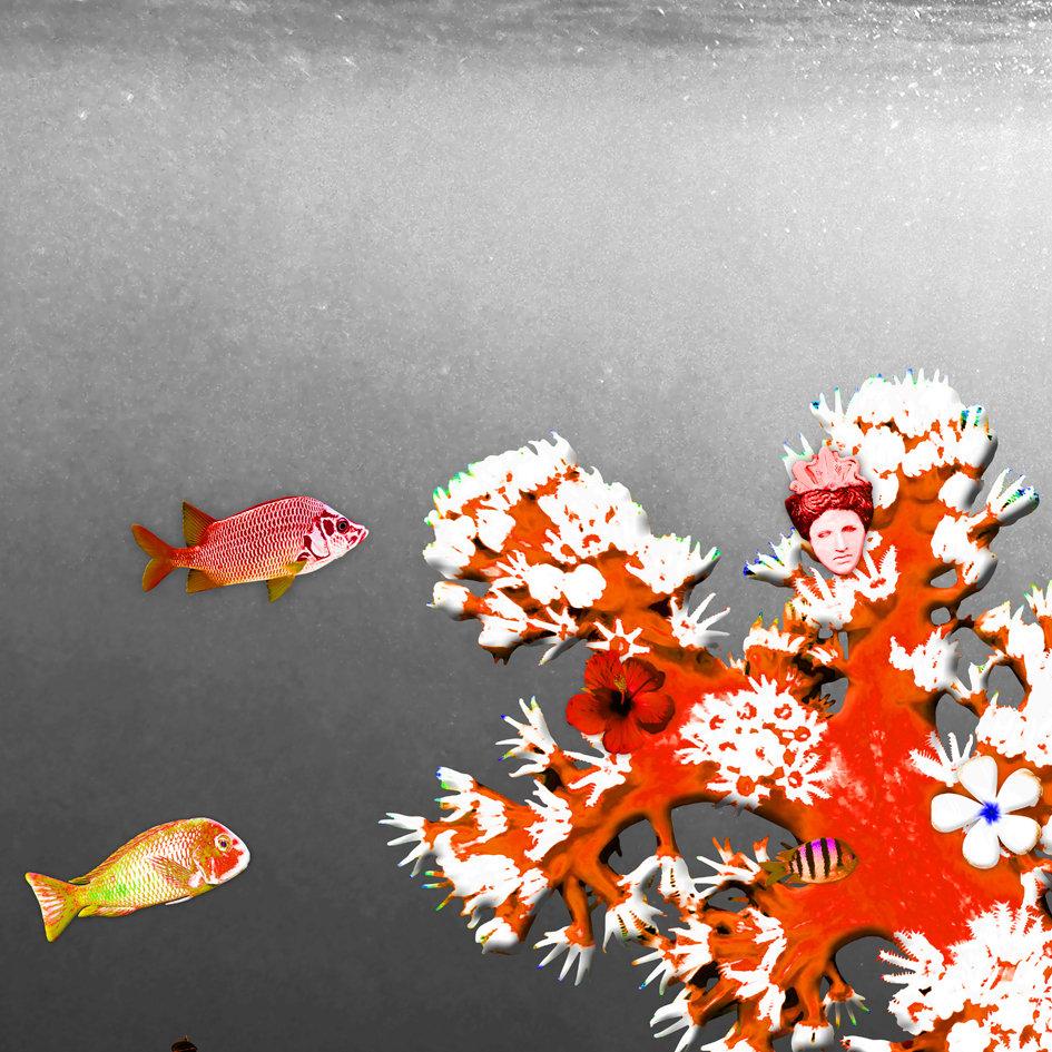 Red_fish_coral_reef_artwork_2.jpg