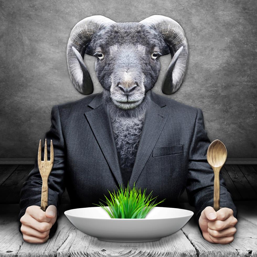 Le Mouton Noir art