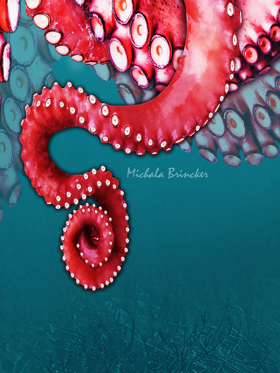 Jellyfish_Octopus_artwork_5.jpg