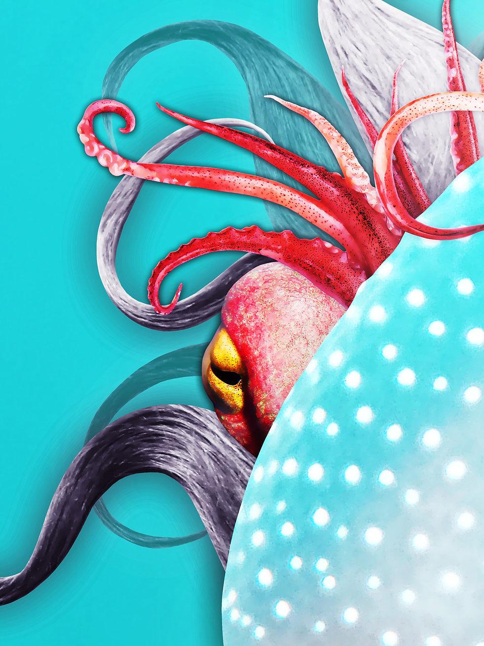 Jellyfish_Octopus_artwork_2.jpg