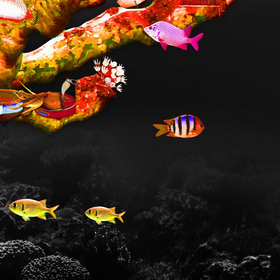Red_fish_coral_reef_artwork_6.jpg