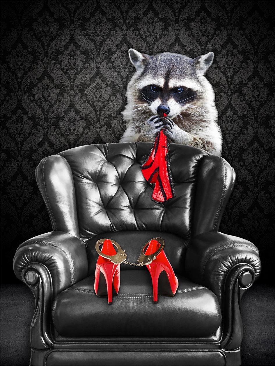 Racoon_artwork_Naughty-Raccoon_art_Micha