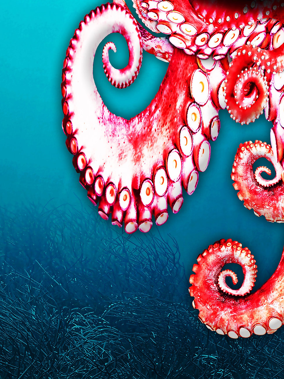 Octopus_artwork_6.jpg