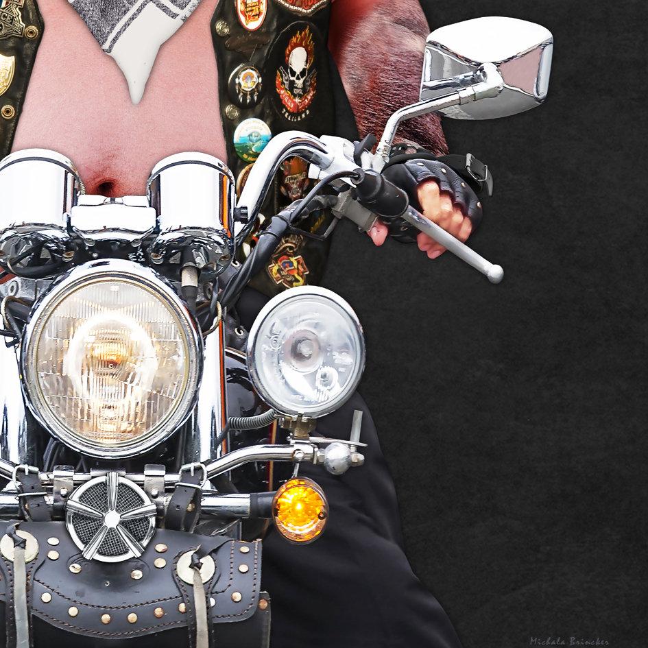 pig_on_Harley_artwork_4.jpg