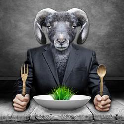 Le Mouton Noir