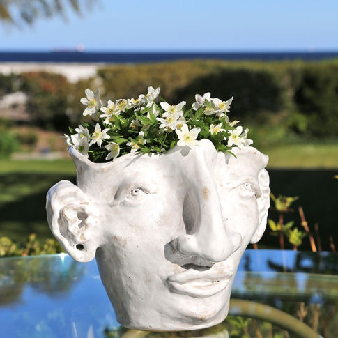 flower vase man face white