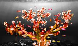 Aquarium red corals - fish artwork