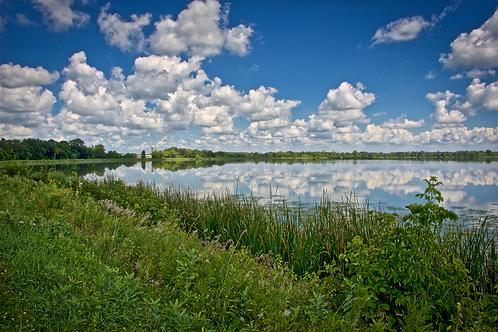 Minnesota Reflection