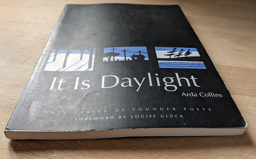"""""""It Is Daylight"""" by Arda Collins"""