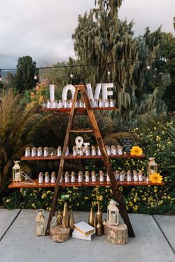 los-angeles-county-arboretum-and-botanic-garden-wedding-photos-photography505