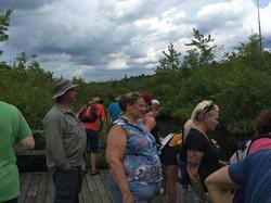 On Bridge 2
