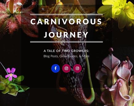 Carnivorous Journey