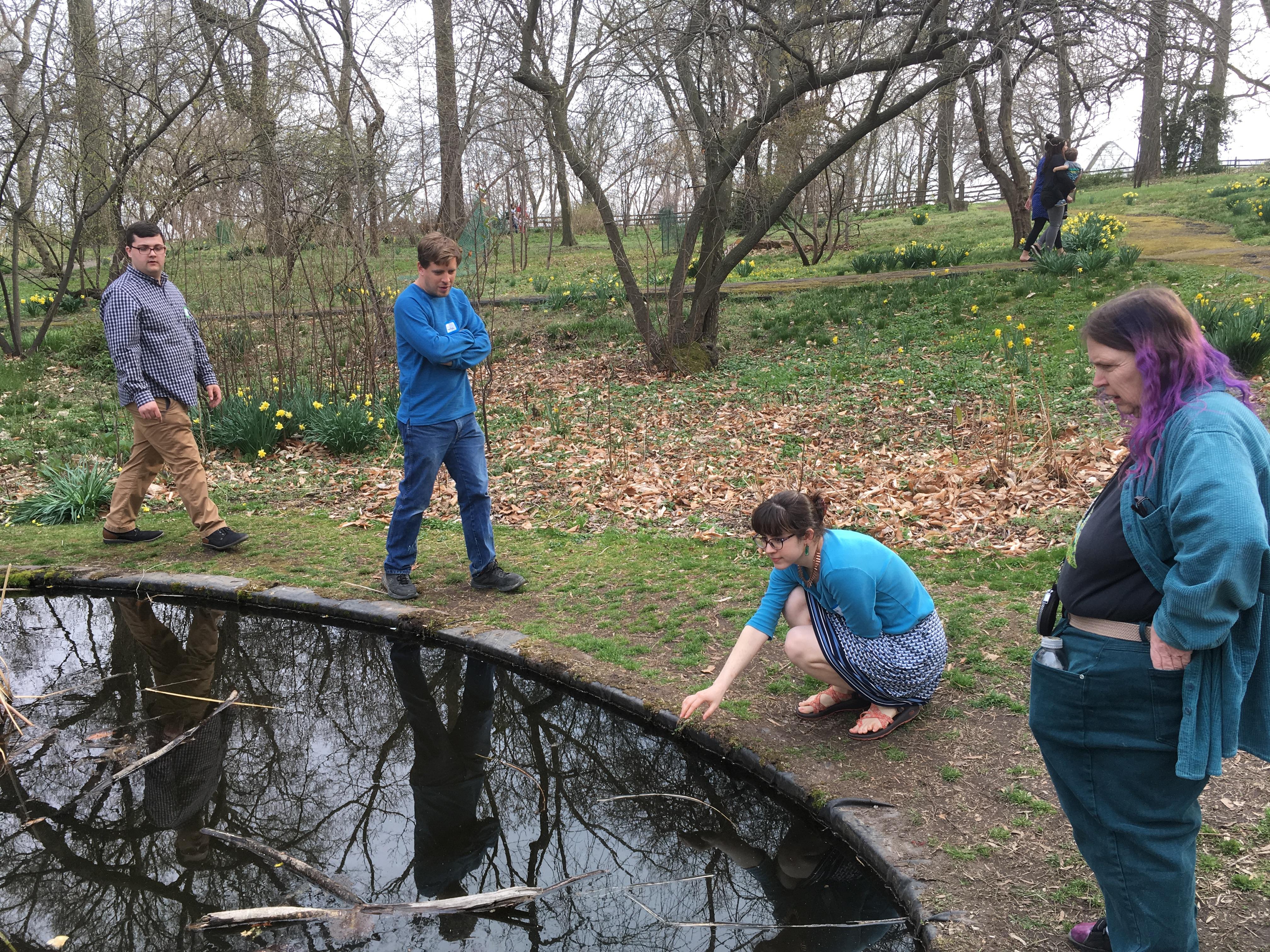 Along pond 2